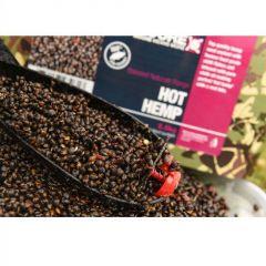 Seminte CC Moore Hot Hemp 2.5kg