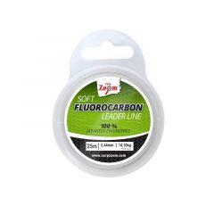 Fir fluorocarbon Carp Zoom Carp'N'Carp Skin Line 0.49mm/17.30kg/25m