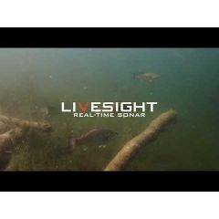 Sonda sonar pescuit Lowrance LiveSight