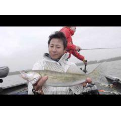 Lanseta Shimano Poison Adrena Spin 266L2 1.98m/3.10g